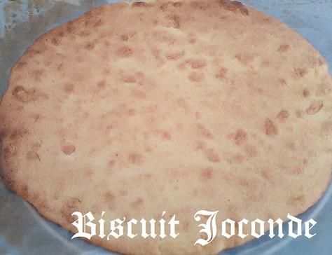 Biscuit joconde