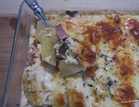 Gratin de pommes de terre jambon et champignons et cantal