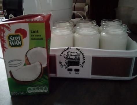 Yaourt au lait de coco en yaourtière